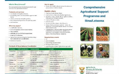 Comprehensive Agricultural Support Programme